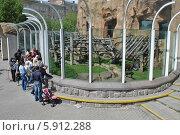 Купить «Вольер для обезьян в московском зоопарке», эксклюзивное фото № 5912288, снято 8 мая 2014 г. (c) lana1501 / Фотобанк Лори