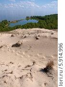 Куршская коса. Вид на озеро Лебедь с самой высокой точки (2014 год). Редакционное фото, фотограф Svet / Фотобанк Лори