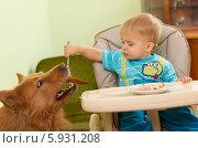 Купить «Ребенок кормит собаку со стола», фото № 5931208, снято 16 июля 2019 г. (c) BE&W Photo / Фотобанк Лори