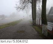 Купить «Ноябрьский туман в маленьком городке», фото № 5934012, снято 11 ноября 2013 г. (c) Ольга Коцюба / Фотобанк Лори