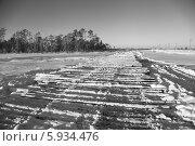 Купить «Лежнёвка на болоте», эксклюзивное фото № 5934476, снято 27 ноября 2012 г. (c) Валерий Акулич / Фотобанк Лори