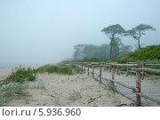 Деревянный променад вдоль берега моря (2014 год). Редакционное фото, фотограф Svet / Фотобанк Лори