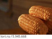 Кукуруза. Стоковое фото, фотограф Анна Баранова / Фотобанк Лори