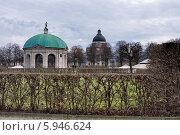 Подстриженные кусты парка Хофгартен в Мюнхене (2013 год). Стоковое фото, фотограф Алексей Яковлев / Фотобанк Лори