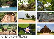 Купить «Коллаж: путешествие на Цейлон (Шри-Ланка)», фото № 5948092, снято 23 апреля 2018 г. (c) SummeRain / Фотобанк Лори