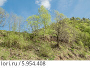 Весна в Нижнем Архызе. Стоковое фото, фотограф Ерохин Валентин / Фотобанк Лори