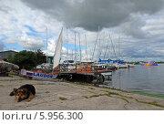 Купить «Яхтенная пристань в Калининградском заливе», эксклюзивное фото № 5956300, снято 3 июля 2011 г. (c) Svet / Фотобанк Лори