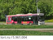 Купить «Коммерческий автобус-автолайн № 169 двигается по улице Проезд Шокальского в районе Медведково, Москва», эксклюзивное фото № 5961004, снято 15 мая 2014 г. (c) lana1501 / Фотобанк Лори