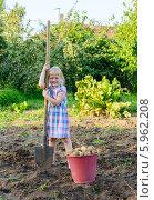 Купить «Маленькая девочка с ведром картошки и лопатой на огороде», фото № 5962208, снято 10 августа 2013 г. (c) Марина Славина / Фотобанк Лори