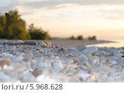 Галечная коса. Стоковое фото, фотограф Николай Марков / Фотобанк Лори