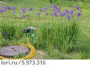 Водопровод возле скважины с таймером полива. Стоковое фото, фотограф Юрий Шурчков / Фотобанк Лори