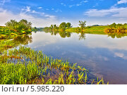 Купить «Летний пейзаж с зеленой травой и река», фото № 5985220, снято 20 мая 2012 г. (c) Sergey Borisov / Фотобанк Лори