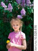 Девочка около куста сирени. Стоковое фото, фотограф Виктор Аксёнов / Фотобанк Лори