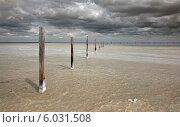 Столбы на соленом озере Баскунчак (2014 год). Редакционное фото, фотограф Александр Степанов / Фотобанк Лори