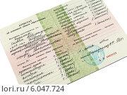 Купить «Школьный аттестат», фото № 6047724, снято 27 июня 2014 г. (c) Оксана Дудкина / Фотобанк Лори