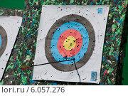 Купить «Стрела из лука поразила цель», фото № 6057276, снято 2 мая 2014 г. (c) Литвяк Игорь / Фотобанк Лори