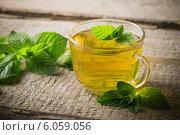 Купить «cups of tea with mint on wooden», фото № 6059056, снято 28 июня 2014 г. (c) Майя Крученкова / Фотобанк Лори