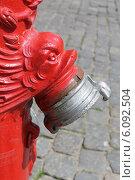 Купить «Верхняя часть старого немецкого гидранта в Калининграде», эксклюзивное фото № 6092504, снято 5 июля 2014 г. (c) Ната Антонова / Фотобанк Лори