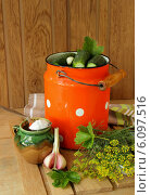 Купить «Засоленные огурчики», фото № 6097516, снято 29 июня 2014 г. (c) Шуба Виктория / Фотобанк Лори