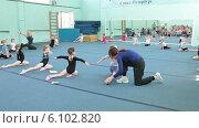 Купить «Тренер по акробатике занимается с дошкольниками», видеоролик № 6102820, снято 17 июня 2014 г. (c) Кекяляйнен Андрей / Фотобанк Лори