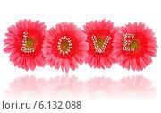 Купить «Жемчужные буквы LOVE на розовых цветах герберы», эксклюзивное фото № 6132088, снято 1 июля 2014 г. (c) Blekcat / Фотобанк Лори