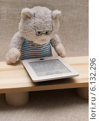 Купить «Игрушки. Кот в очках читает электронную книгу.», эксклюзивное фото № 6132296, снято 5 апреля 2014 г. (c) Dmitry29 / Фотобанк Лори