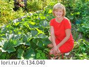 Красивая женщина  работает на даче в огороде. Стоковое фото, фотограф Юрий Морозов / Фотобанк Лори