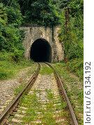 Купить «Заброшенный железнодорожный тоннель, Абхазия», фото № 6134192, снято 13 июля 2014 г. (c) Магадеева Елена / Фотобанк Лори