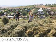 Скирдование (2014 год). Редакционное фото, фотограф Гуньков Валерий Анатольевич / Фотобанк Лори