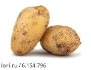 Купить «Две сырые картофелины на белом фоне», фото № 6154796, снято 8 июля 2014 г. (c) Andrey Eremin / Фотобанк Лори