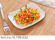 Купить «Салат из кукурузы, зеленого горошка и болгарского перца», фото № 6199632, снято 29 июня 2014 г. (c) Александр Лычагин / Фотобанк Лори