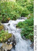 Горный ручей с чистой водой. Стоковое фото, фотограф Боярова Светлана / Фотобанк Лори