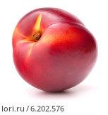 Купить «Nectarine fruit isolated on white background cutout», фото № 6202576, снято 23 августа 2013 г. (c) Natalja Stotika / Фотобанк Лори
