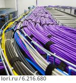 Купить «Большая группа кабелей связи сиреневого цвета», фото № 6216680, снято 22 января 2019 г. (c) Mikhail Starodubov / Фотобанк Лори