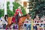 Конное шоу Кремлевской Школы Верховой езды на ВДНХ, эксклюзивное фото № 6226412, снято 1 июля 2014 г. (c) Алёшина Оксана / Фотобанк Лори