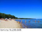 Купить «Балтийское море, пляж в поселке Куликово, Калининградская область», фото № 6230608, снято 19 июля 2014 г. (c) Михаил Рудницкий / Фотобанк Лори