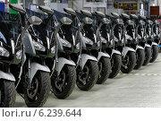 Купить «Berlin, Germany, BMW E-Scooter production», фото № 6239644, снято 4 апреля 2014 г. (c) Caro Photoagency / Фотобанк Лори