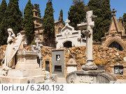 Купить «Montjuic Cemetery», фото № 6240192, снято 20 июля 2014 г. (c) Яков Филимонов / Фотобанк Лори