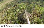 Купить «Траву подстригают с помощью электрического газона», видеоролик № 6246300, снято 6 августа 2014 г. (c) Кекяляйнен Андрей / Фотобанк Лори