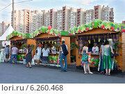 Купить «На фестивале «Московское варенье»», фото № 6260468, снято 8 августа 2014 г. (c) Victoria Demidova / Фотобанк Лори