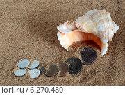 Купить «Натюрморт на песке с ракушкой и монетами», фото № 6270480, снято 10 августа 2014 г. (c) Грачев Игорь / Фотобанк Лори