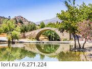 Купить «Мост Бурдзуку с отражением», фото № 6271224, снято 1 июля 2014 г. (c) Елена Троян / Фотобанк Лори