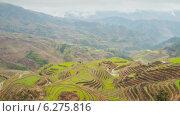 Купить «Рисовые террасы в деревне Дазай, Китай, таймлапс», видеоролик № 6275816, снято 2 августа 2014 г. (c) Кирилл Трифонов / Фотобанк Лори