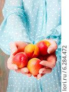 Купить «Woman holding apricots», фото № 6284472, снято 20 марта 2019 г. (c) BE&W Photo / Фотобанк Лори