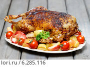 Купить «Roasted goose on wooden table», фото № 6285116, снято 26 сентября 2018 г. (c) BE&W Photo / Фотобанк Лори