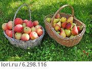 Купить «Яблоки и груши в корзине», эксклюзивное фото № 6298116, снято 17 августа 2014 г. (c) Юрий Морозов / Фотобанк Лори