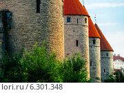 Четыре башни Таллиннской городской стены (2014 год). Стоковое фото, фотограф Aleksandr Stzhalkovski / Фотобанк Лори