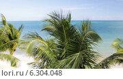 Купить «Tropical beach with palm trees», видеоролик № 6304048, снято 30 июля 2014 г. (c) Syda Productions / Фотобанк Лори