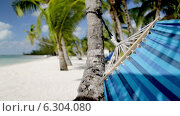 Купить «Close up of hammock swinging on tropical beach», видеоролик № 6304080, снято 30 июля 2014 г. (c) Syda Productions / Фотобанк Лори