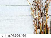 Купить «Ветки вербы с почками на деревянном фоне», фото № 6304464, снято 11 февраля 2014 г. (c) Афанасьева Ольга / Фотобанк Лори
